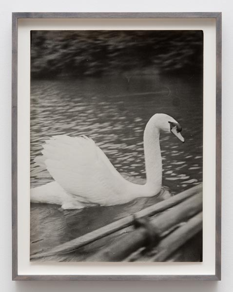 "Guided in silence (11th page of the ""Sleeping Beauty""), vintage silver print, 39 x 29 cm (unframed size), 1982"