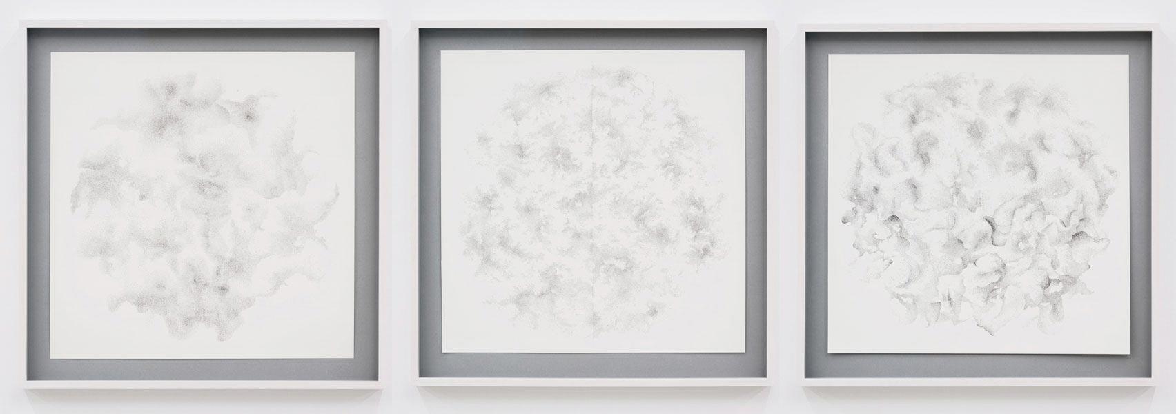 C Drawings, 2009; ink on paper, each 55 x 55 cm
