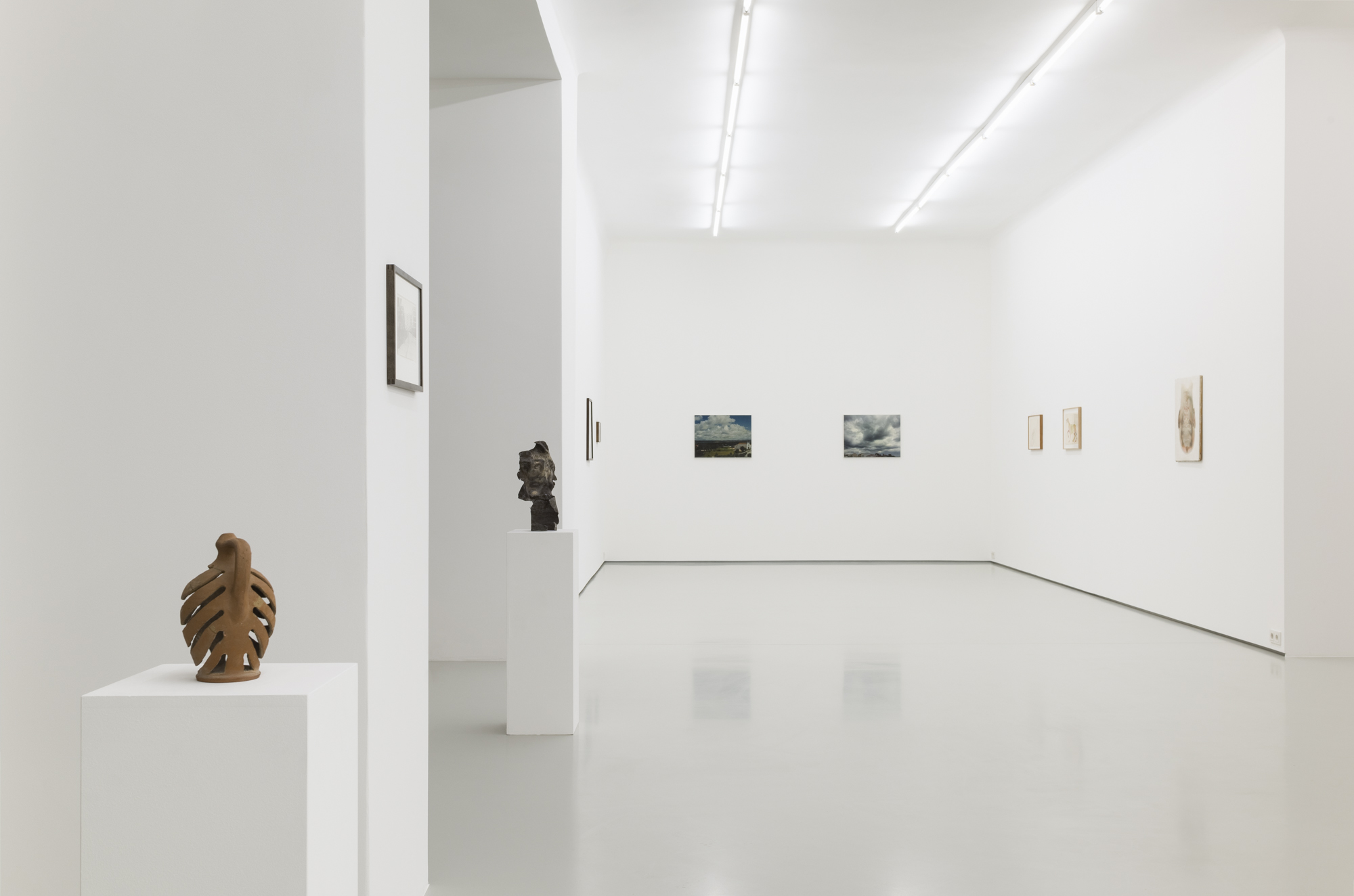 Commentary upon Nature exhibition view at Gregor Podnar, 2019. Photo: Marcus Schneider