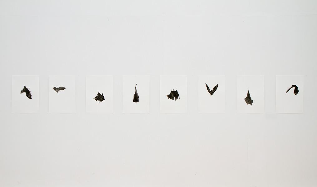 Caves, collage on paper, 2011. Exhibition view at Galerija Gregor Podnar, Ljubljana, 2011