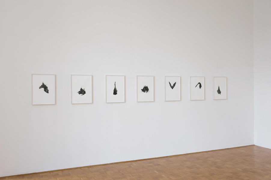 Anna Ling: Jellyfish, exhibition view, Galerija Gregor Podnar, Ljubljana, 2011