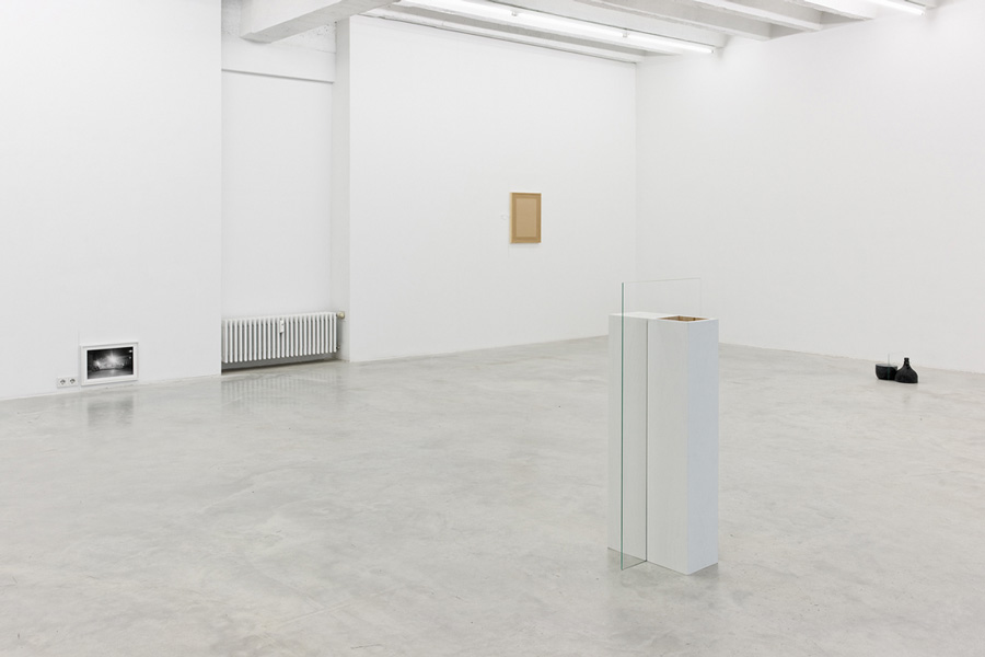Common Places, exhibition view at Galerija Gregor Podnar, Berlin, 2013. Photo: Marcus Schneider