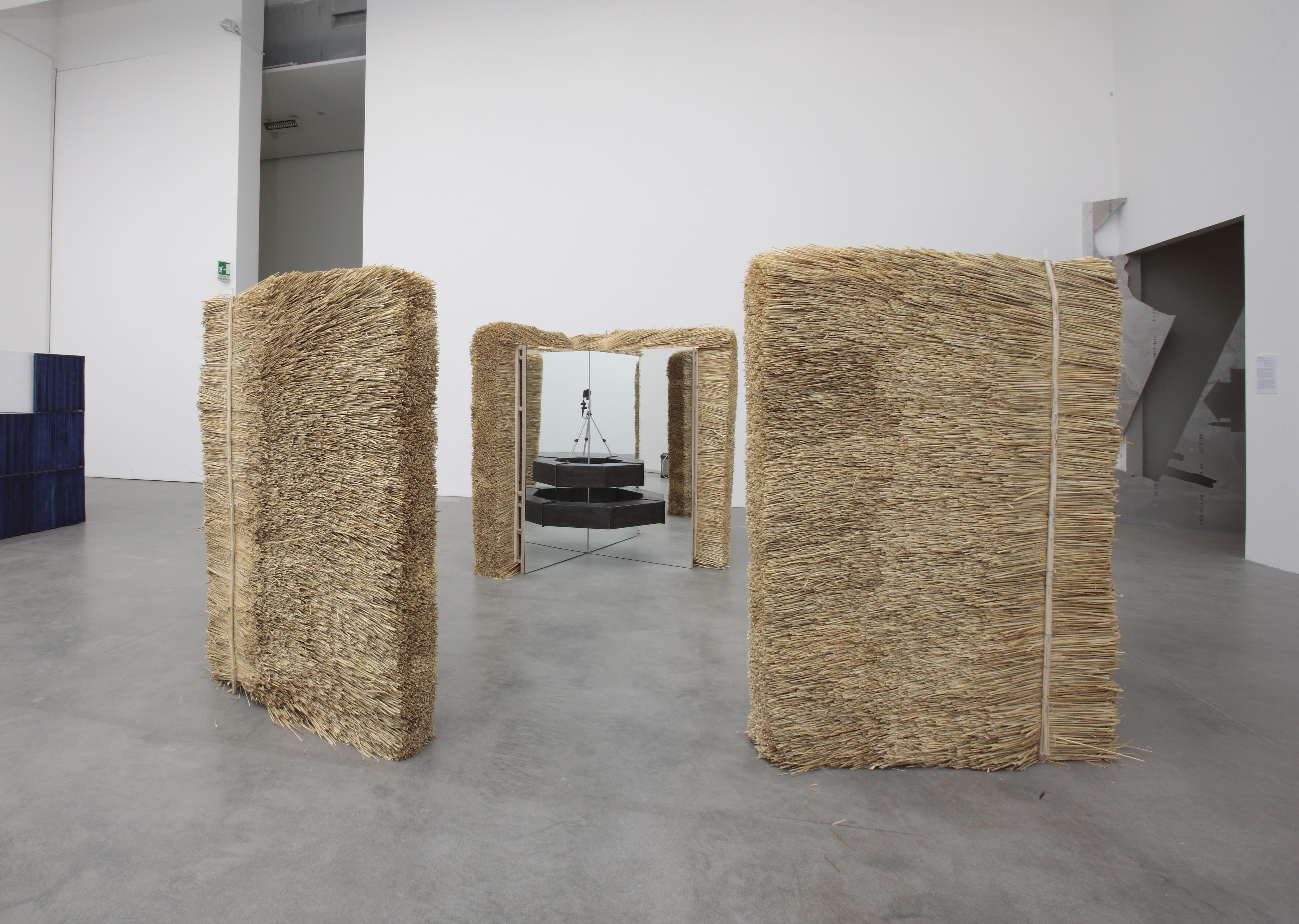 Einzelhof, exhibition view at Un' Espressione Geografica, Fondazione Sandretto Re Rebaudengo, Torino, 2011