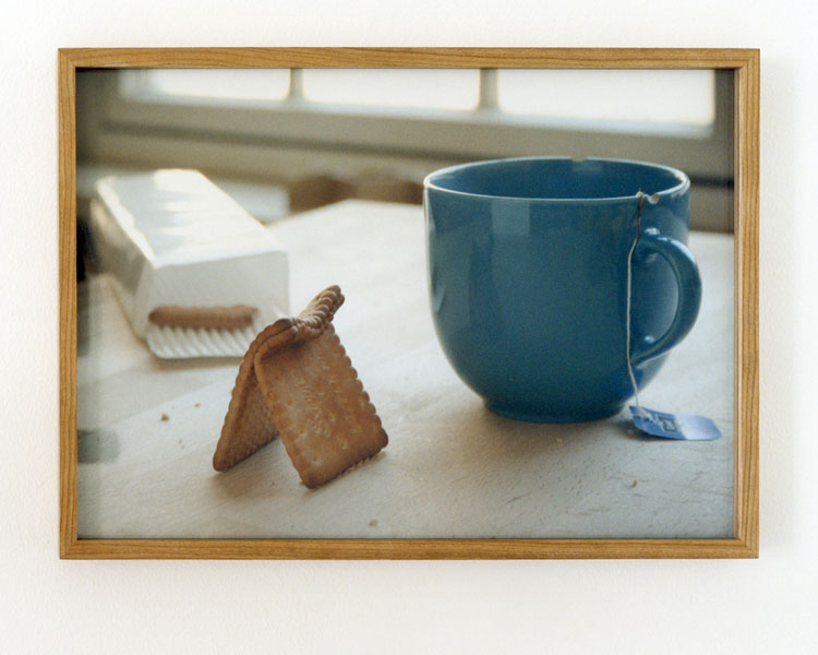 Untitled (Two Wet Biscuits), C-print, 20 x 24 cm, 2008