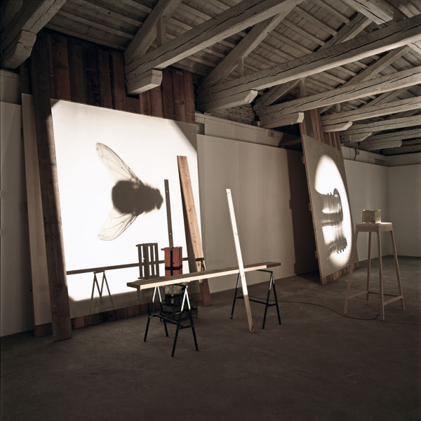 Scenario (Lantern 1), various materials, 2011. Exhibition view at Portuguese Pavilion, 54th Venice Biennial, Venice, 2011