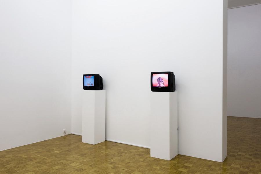 Mladen Stropnik: fuckin´hanging, exhibition view, Galerija Gregor Podnar, Ljubljana, 2009