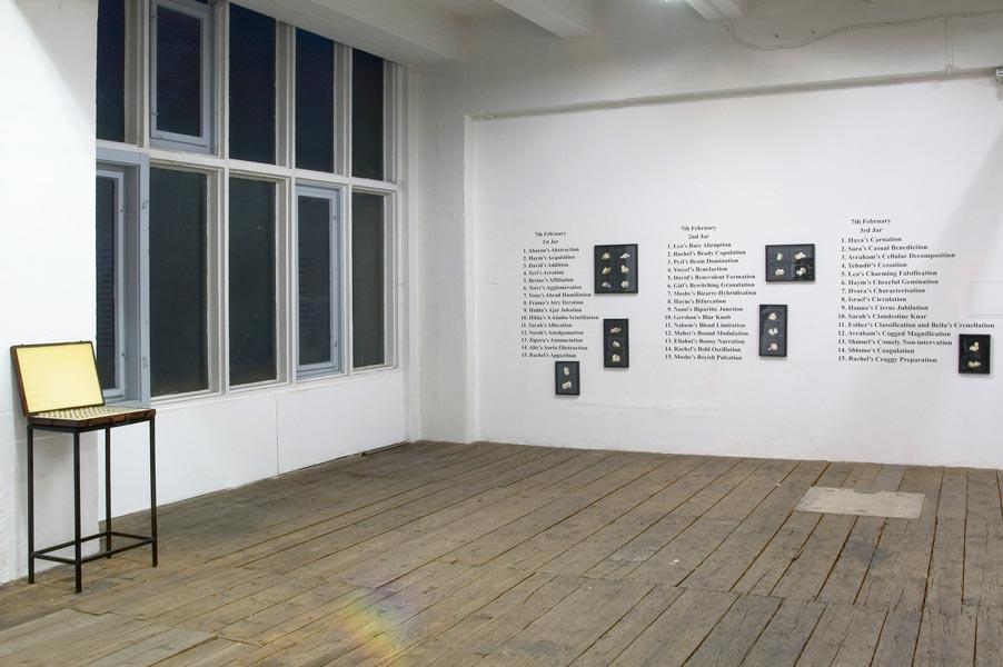 Yuri Leiderman: Kefir grains are going onto the flight, exhibition view, Galerija Gregor Podnar, Kranj, 2004