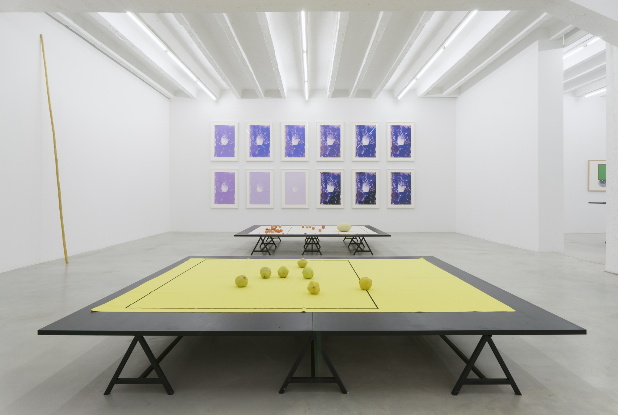 Francisco Tropa: Noche Triste, exhibition view, Galerija Gregor Podnar, Berlin, 2015. Photo: Marcus Schneider