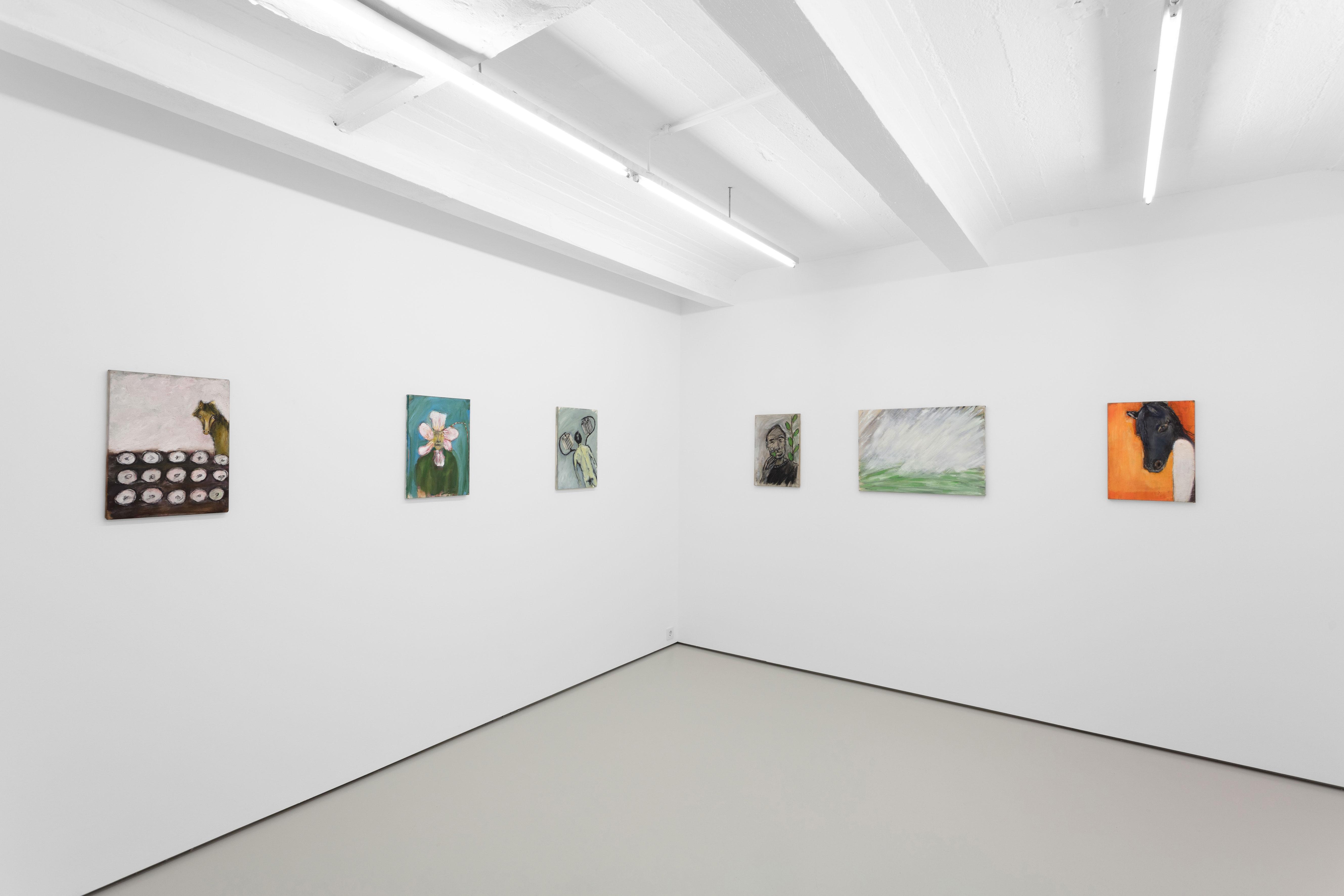 Yuri Leiderman, Ballad of Snow Falling Into the Sea, exhibition view at Gregor Podnar, Berlin, 2020. Photo: Marjorie Brunet Plaza