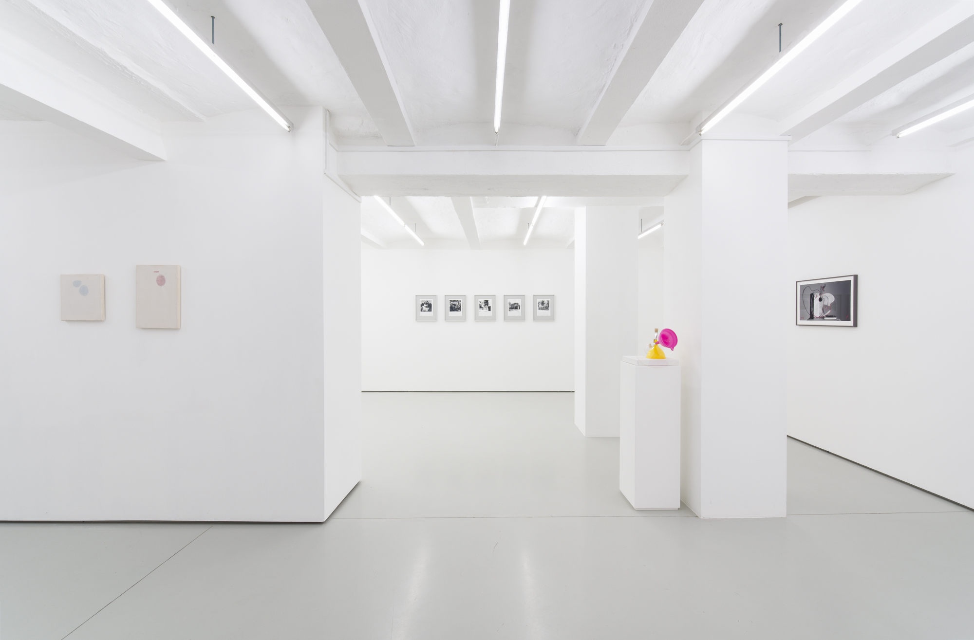 Goran Trbuljak. From Self Ironic to Self Sardonic. With 40 years of painting. Installation view at Gregor Podnar, Berlin, 2021. Photo: Marcus Schneider
